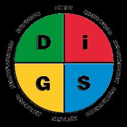 DiSG Unternehmer