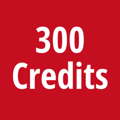 300_DiSG-Credits
