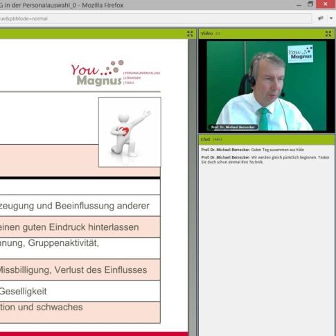 DiSG-Seminar-Online